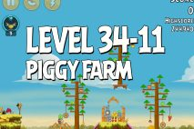Angry Birds Piggy Farm Level 34-11 Walkthrough + Stella Bug Glitch Video
