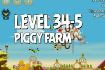 Angry Birds Piggy Farm Level 34-5 Walkthrough