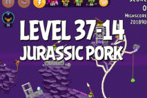 Angry Birds Jurassic Pork Level 37-14 Walkthrough