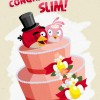 Angry Birds Congratulations on the Engagement Slim from Rovio