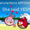 Congrats on the Engagement Amslimfordy
