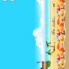 Rio Golden Beachball