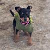 PicsArt_01-20-10.26.30.jpg