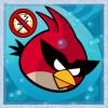 Space Red Bird avatar