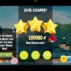 Rio Blossom River Star 3 – 2-bird high score