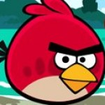 Profile picture of thebestbird7