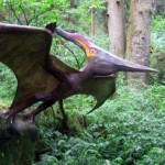 Profile picture of AngryPterodactyl