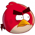 Profile picture of red bird
